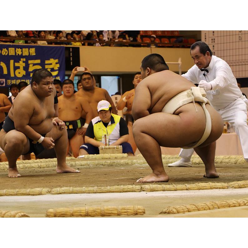 相撲競技に多くの観客詰め掛ける-相撲(少年男子)