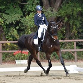 馬とともに演じる馬場馬術